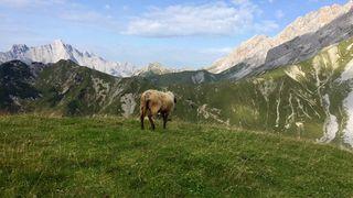 """Mair: """"Wertvolle Natur- und Kulturlandschaften erhalten."""""""
