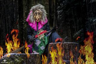 """Die Hexen führen den Umzüge an, wobei sie symbolisch den Schnee wegkehren, um dem herannahenden Frühling Platz zu machen. """"Die fetzigen Hexen"""""""