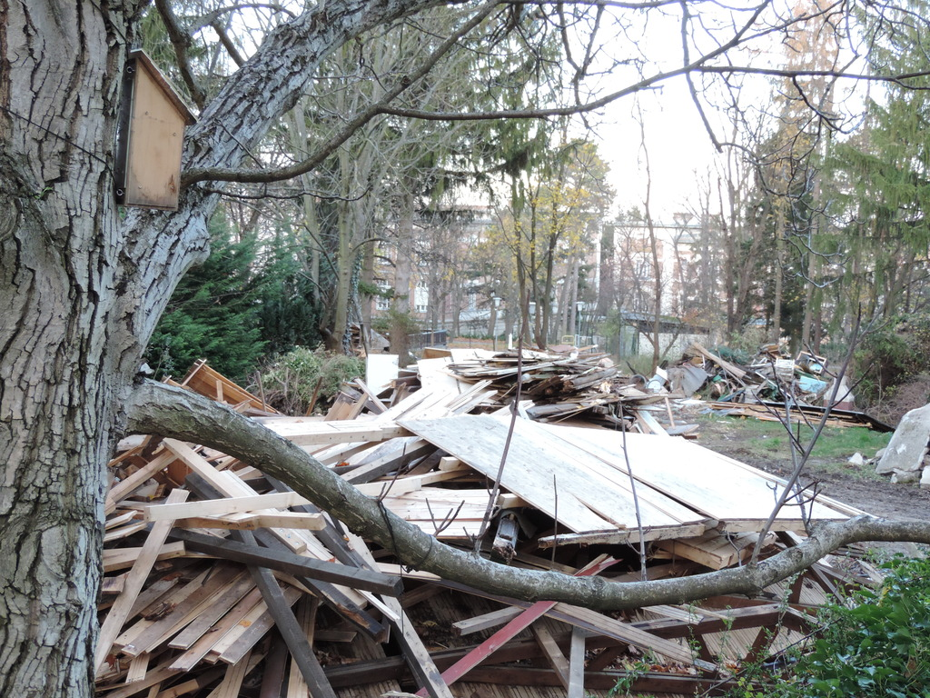 Die Idylle des Areals direkt am Hörndlwald wird durch die Trümmer getrübt