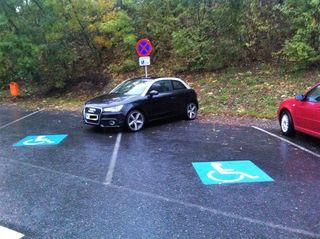 Bei solchen Aktionen darf man an der Verkehrstaulichkeit des Lenkers zweifeln.