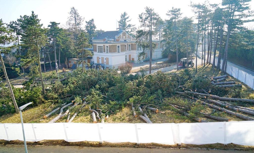 Das Föhrenwäldchen wurde vor einigen Monaten geschlägert und die Gesiba begann mit der Errichtung der ersten vier Wohnhäuser.