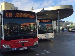 Geht es nach den Neos, sollen die Buslinien im Bezirk effizienter gestaltet werden.