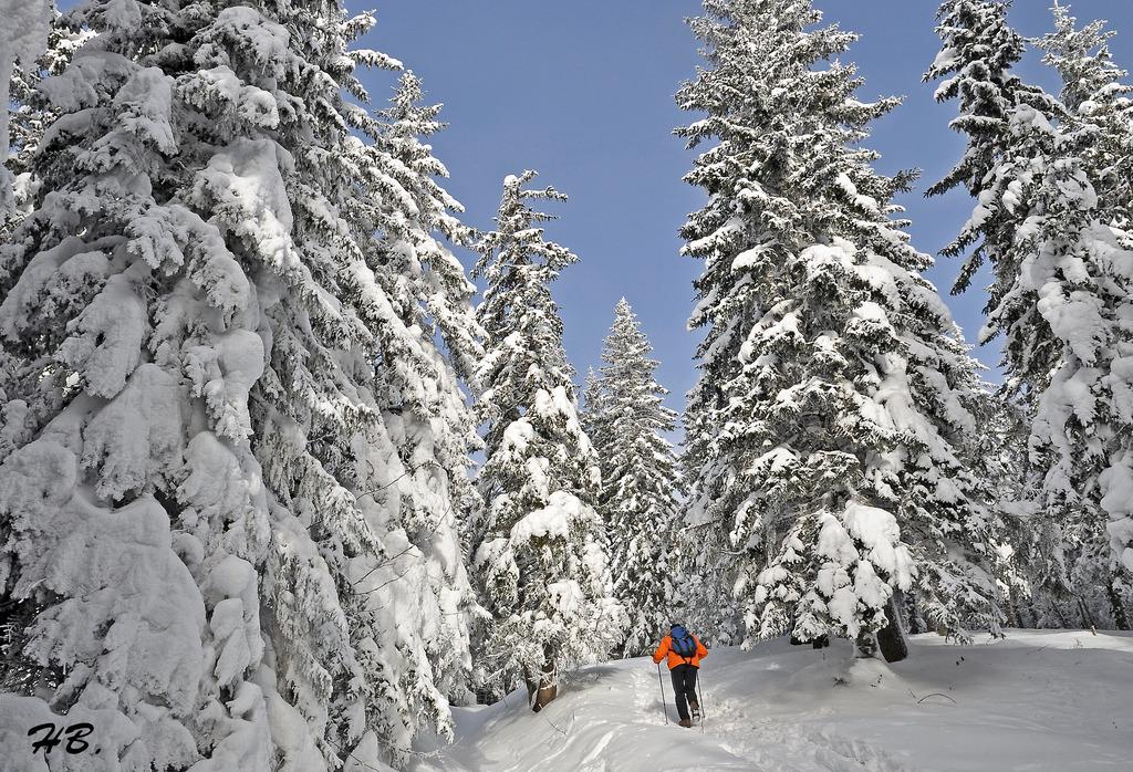 Weiße Weihnachten.Weiße Weihnachten 2017 In Der Steiermark So Stehen Die Chancen