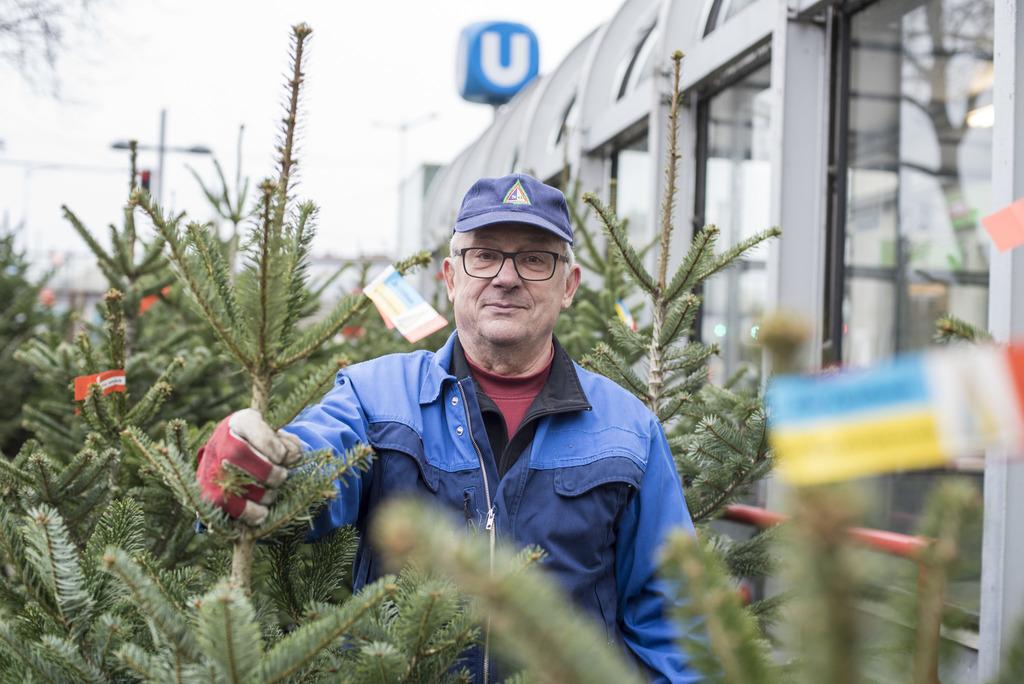 Wien Weihnachtsbaum Kaufen.Christbäume In Wien Kaufen Was Sie Beachten Müssen Wieden