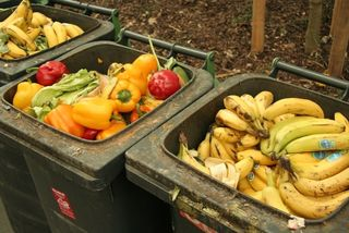 Laut einer Untersuchung der BOKU Wien wirft ein durchschnittlicher Haushalt jährlich genussfähige Lebensmittel im Wert von rund 300 Euro in den Mistkübel.