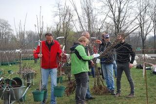 Sammelbestellung von Jungbäumen sind zwischen 18. Dezember und 15. Jänner möglich. Das Bestellformular steht unter www.naturpark-suedsteiermark.at/aktuelles-aus-dem-naturpark zum Downloaden bereit.