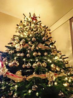 weihnachtsbaum in villach thema auf. Black Bedroom Furniture Sets. Home Design Ideas