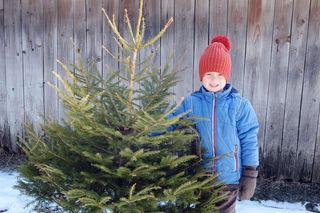 Wer den Christbaum nicht von der Gemeinde abholen lassen will, der kann ihn bei richtiger Verwertung auch selbst entsorgen.