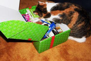 Natürlich bekommen auch die Katzen Geschenke :D