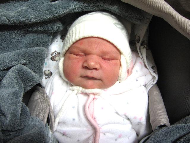 53622d67bc Babyfoto der Woche - Thema auf meinbezirk.at