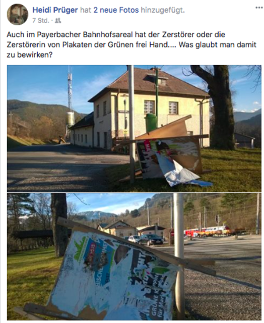 Grüne-Gemeinderätin Heidi Prüger dokumentierte die Zerstörungswut.