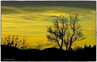So zeigte sich der Himmel am Freitag abends auf den Steinhofgründen...