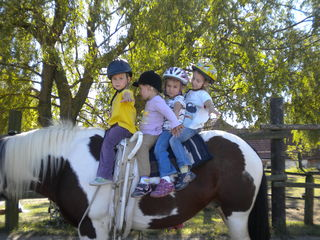 Früh übt sich was ein guter Reiter werden will