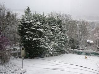 Aus meinem Küchenfenster heute 10.15 h !