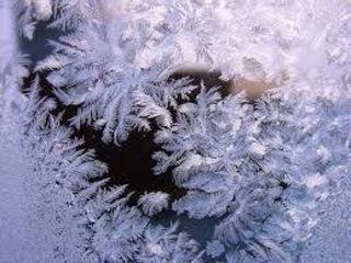 """...die in den Büschen hängen bleiben; an Zweigen, wie Kristalle so klar! Ich hauche Blumen auf die Scheiben und denk': """"Es war ein gutes Jahr!""""  (Reinhard Mey)"""