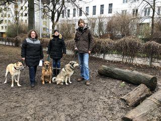 Besuchen mehrmals täglich die Hundezone im Schubertpark: Nicole Blumencron, Christa Ebert und Florian Plattner (v.l.).