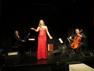 Die Musiker Joachim Claucig, Angela Kiemayer und Peter Illavsky haben sich auf Operetten mit kreativem Touch spezialisiert.
