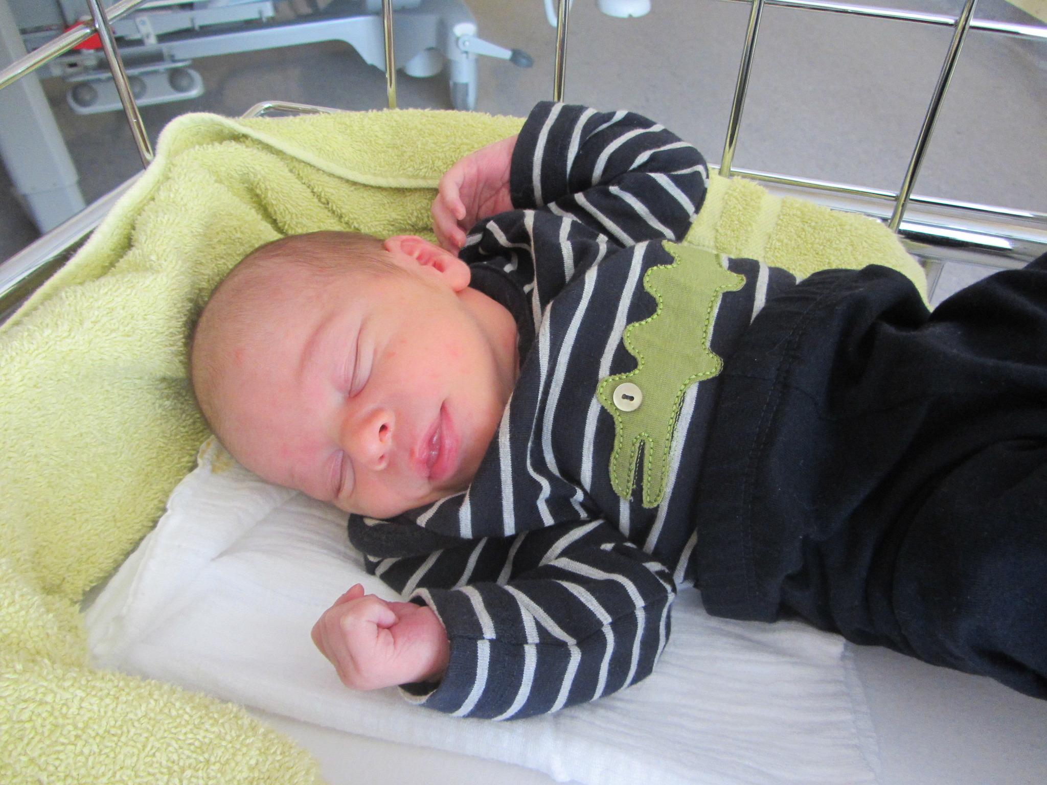 Baby der Woche 5 - Nico Hrabek - Korneuburg