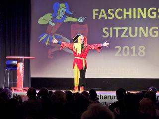 Alexius Vogel bei der Faschingssitzung 2018