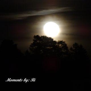 Der Mond am 2.Februar um 21.o4 h aus meinem Küchenfenster gesehen! (freihändig ohne Stativ einfach nur so)