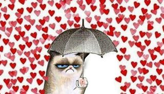 24 Stunden in der ultimativen Pärchenfalle: So fühlt sich der Valentinstag für viele Singles an.