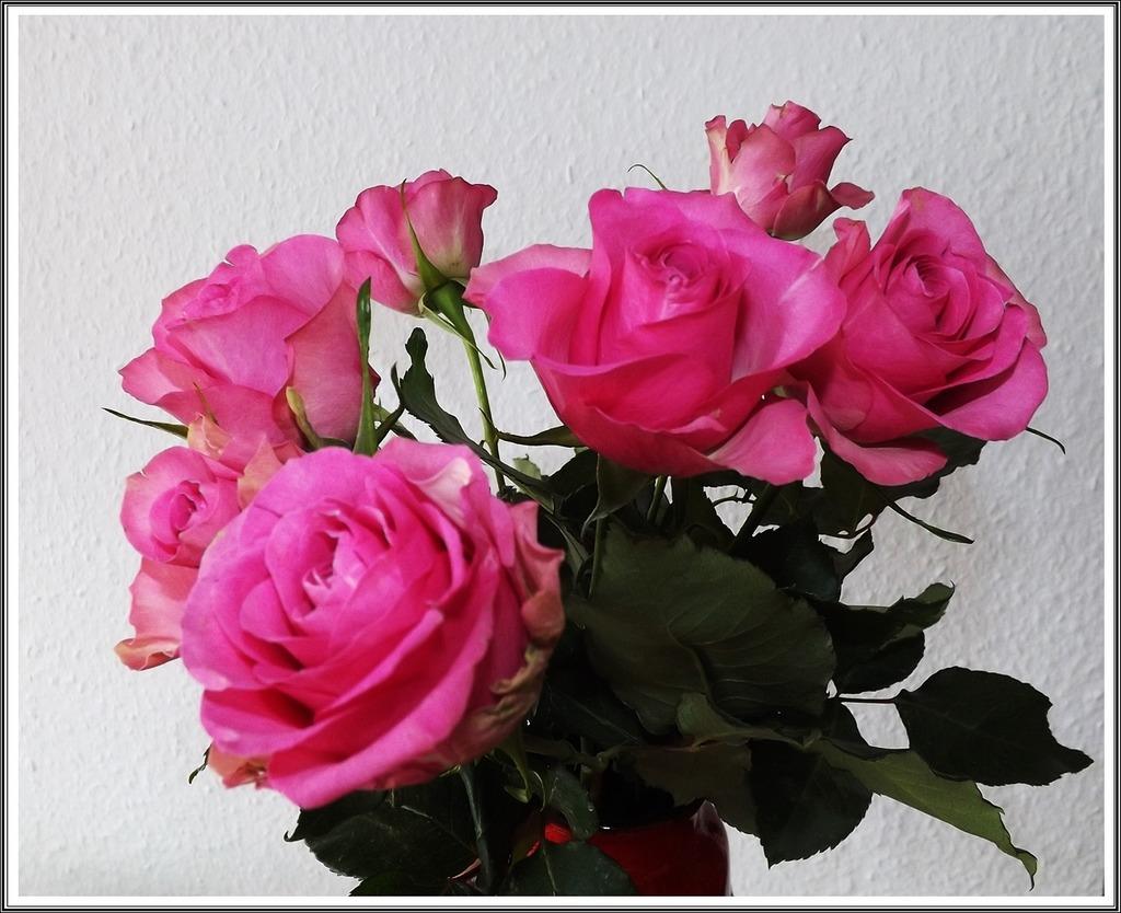 Einen Schönen Valentinstag St Veit