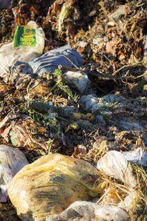 """Biomüll wird oft durch Plastik """"verschmutzt""""."""