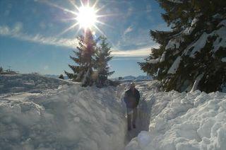 Eine Winterwanderung am Gaisberg ist derzeit nicht möglich