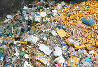 Nur 14 Prozent der weggeworfenen Lebensmittel sind Speisereste, ein Drittel wird im Kaufzustand entsorgt.
