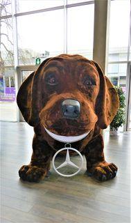 Mercedes-Maskottchen auf der AutoEmotion Graz