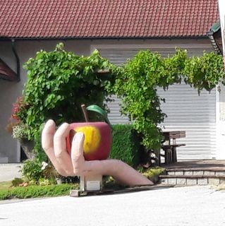 Der Apfel ist immer wieder präsent.
