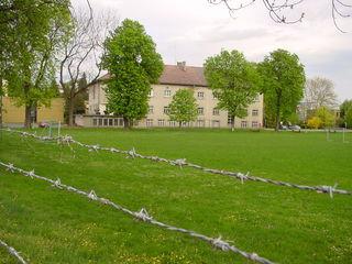 Diese Grünfläche an der Kirchnerkaserne soll genutzt werden.