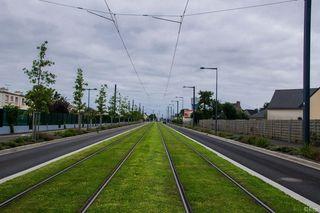 Die französische Stadt Brest setzt auf begrünte Gleise.