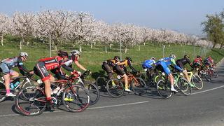 Das traditionelle Kirschblütenrennen lockt jedes Jahr Amateure wie Profis in das Schartner Hügelland.