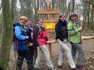 Bernadette Prinz, Gottfried Löw, Gabriele Dienstl, Karin Heindl, Pilgerführerin Andrea Löw: Schritt für Schritt am Jakobsweg bis nach Mistelbach.