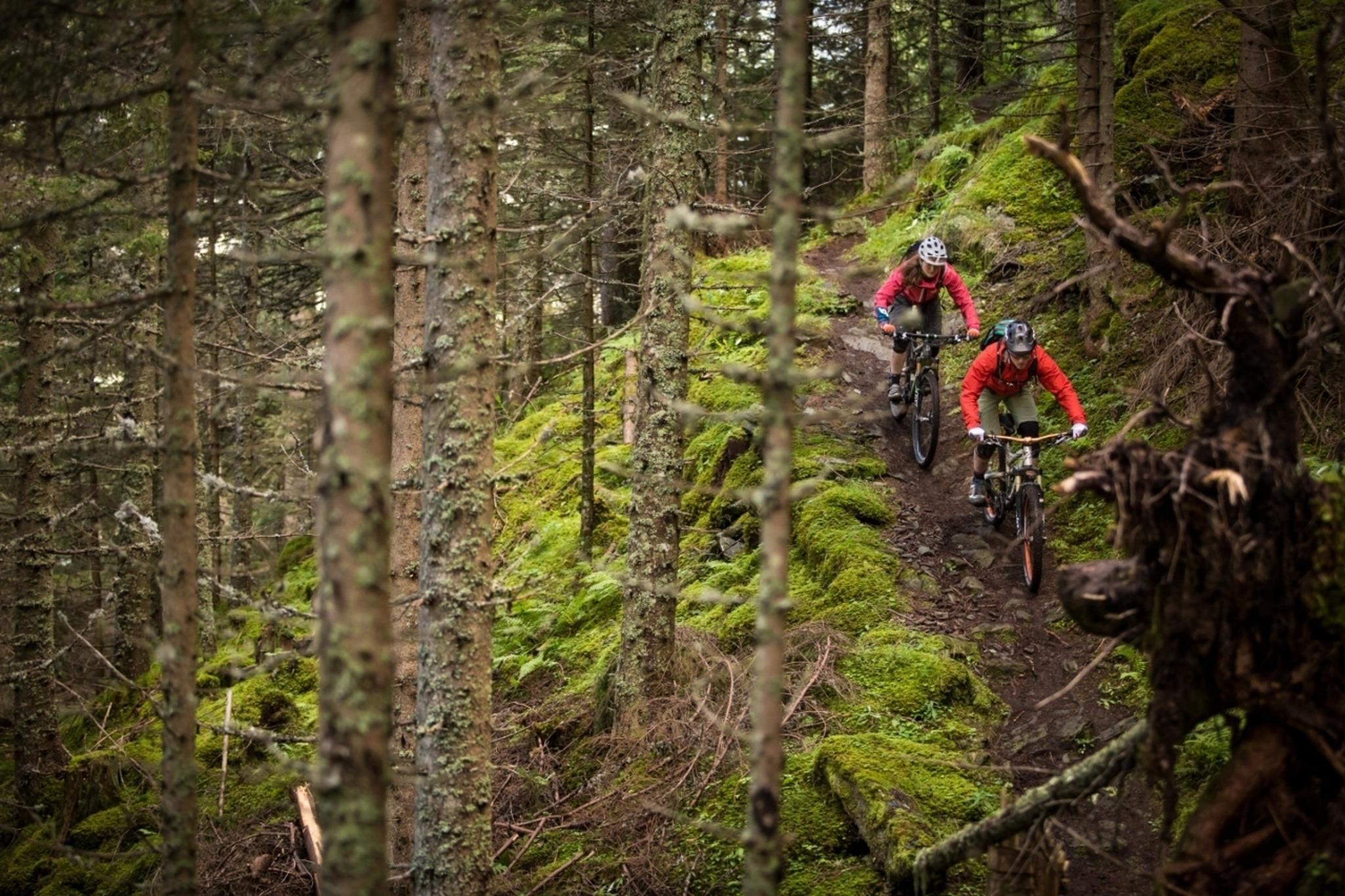Grne Oberperfuss: Single-Trail nein, danke! - Westliches
