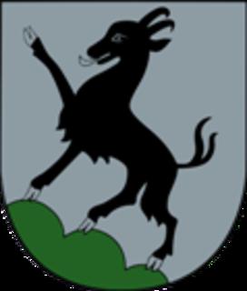 Polizeiball in Kitzbühel