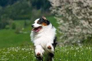 Frühlingsgefühle und raus in die Natur