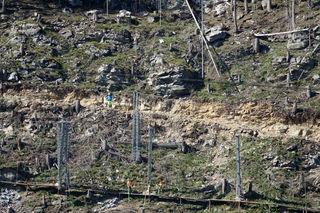 Finkenberg—Errichtung eine Steinschlagschutzzaunes-fotocredit: ZOOM.TIROL