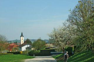 Blick auf St. Marienkirchen