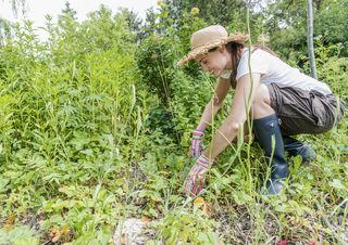 Im Mai ist Hochsaison für die Gartenarbeit.