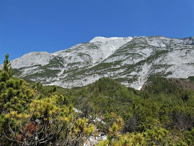 Fast senkrecht ragen die Felswände an der Südseite der Hohen Munde in den Himmel. Kein Wunder, dass hier im Winter natürlich regelmäßig Lawinen talwärts donnern