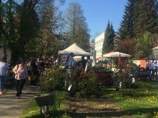 Perfektes Wetter bot der Markt bereits heute am ersten Ausstellungstag.
