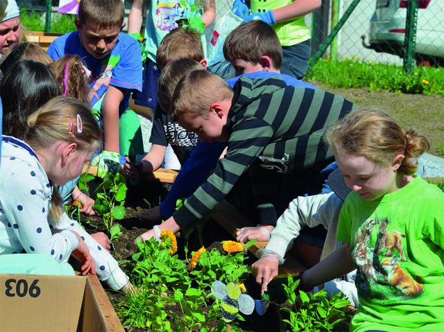 Wildblumen und ein Naschgarten für die Kinder.