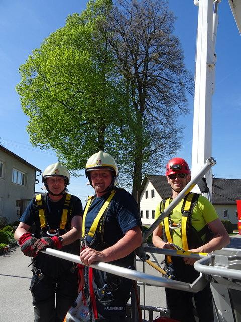 Josef Bräuer und Feuerwehrkommandant Reinhard Kaltenberger führten die Arbeiten bei der Fällung der beiden Jubiläumslinden mit Hilfe des Feuerwehr-Hubsteigers aus
