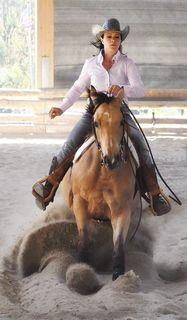 """Besonders spektakulär ist die Disziplin: Sliding Stops (Anhalten des Pferdes aus einem schnellen Galopp. Das Pferd """"setzt"""" sich auf die Hinterbeine und rutscht dabei, während es mit den Vorderbeinen bis zum Stillstand weiterläuft)"""
