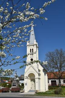Obstbaumblüte in Weichselbaum