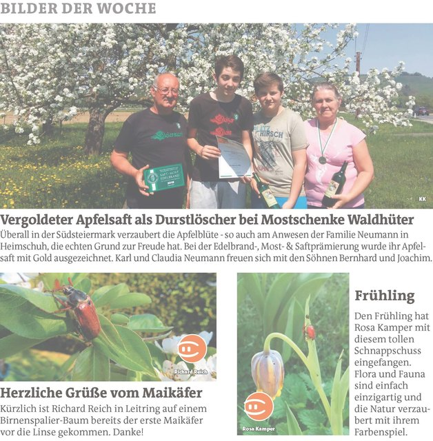 Tarsdorf Reiche Frau Sucht Mann Krenglbach Partnersuche