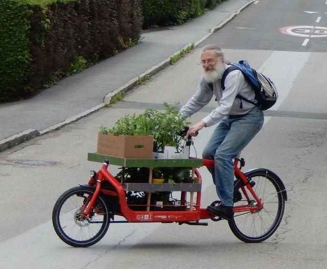 Das Lastenrad beim Zustellen der Jungpflanzen