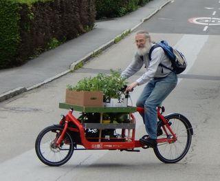Das Lastenrad beim Zustellen der Jungpflanzen (Foto: Barbara Regelsberger)